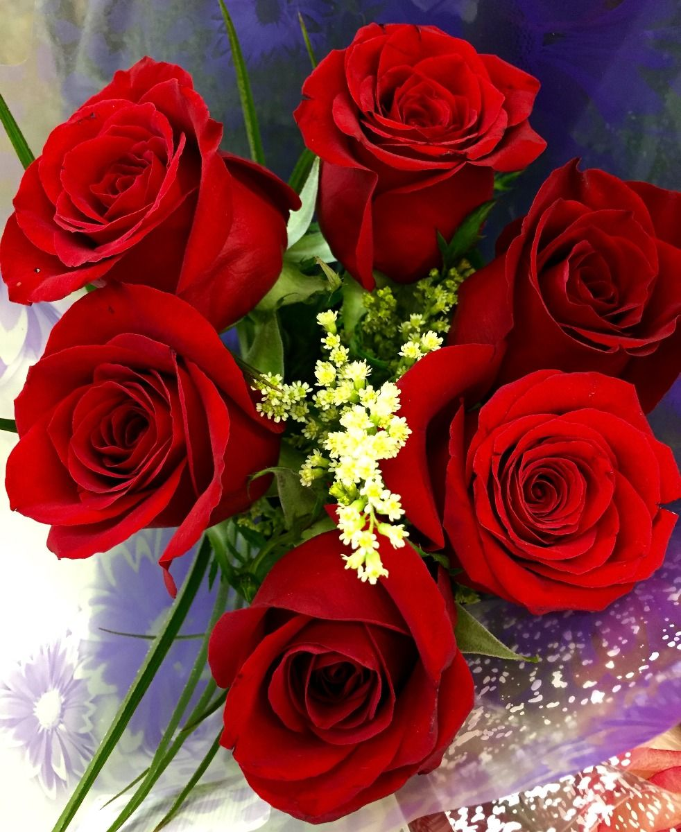 Red roses bunch - Bunch of roses hd images ...