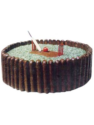 cricket Shape Cake