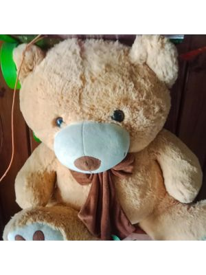 Brown Teddy bear Ahmedabad